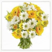 Yellow Bouquet 'Smile'