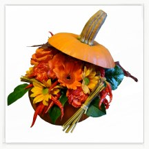 Jesienna dynia kwiatowa