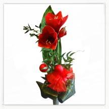 Świąteczne kwiaty