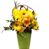 Wiosenna kompozycja z żółtych kwiatów.