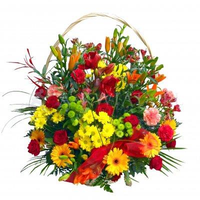 Kwiaty doniczkowe na taras